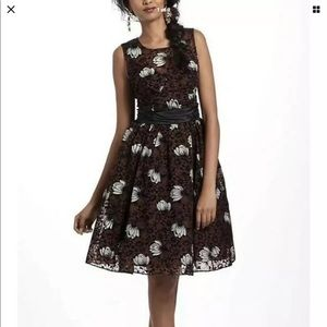 Frock by Tracy Reese Dress size 6 NWT